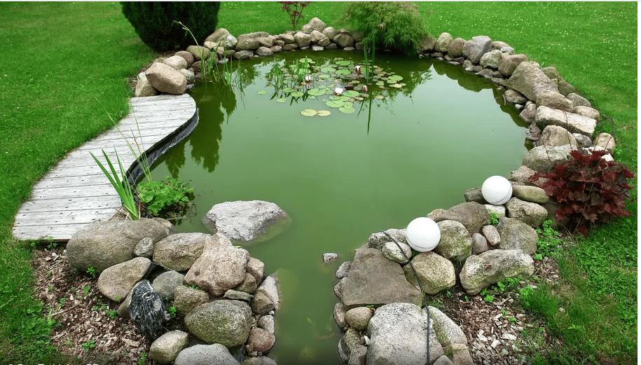 Comment aménager un bassin dans son jardin ?