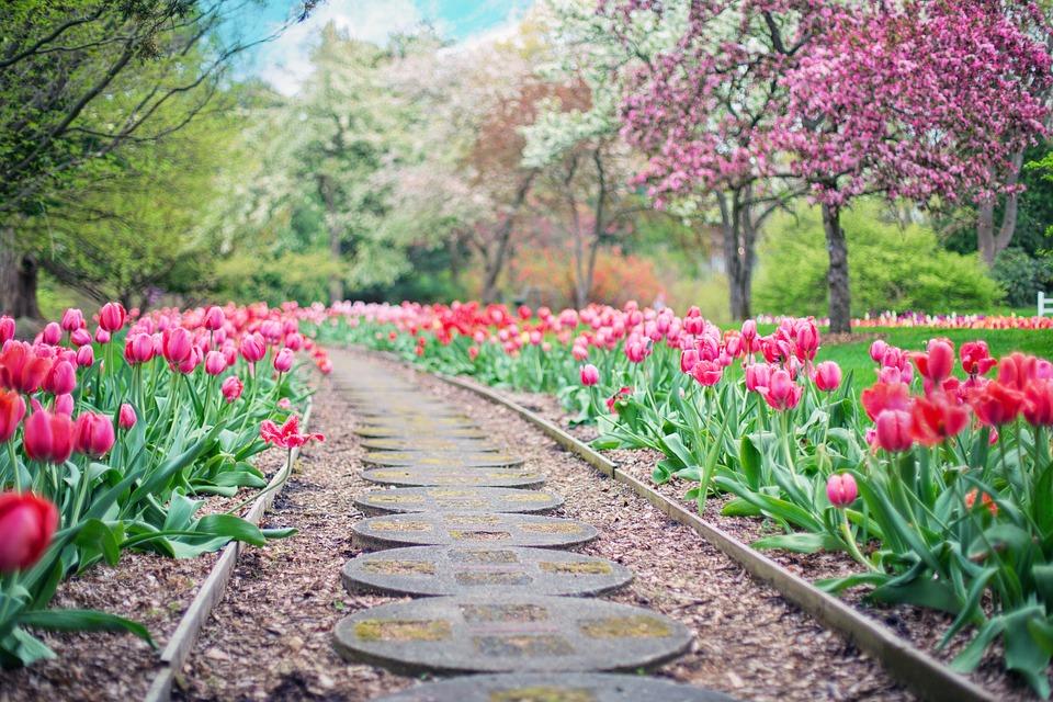 4 astuces efficaces pour bien aménager son jardin