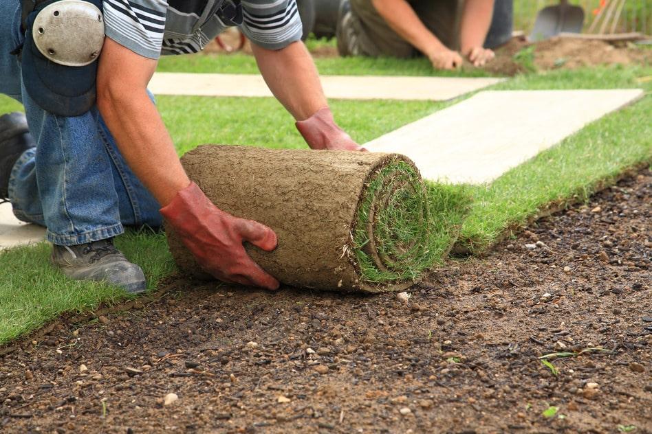 Quel est le rôle d'un jardinier paysagiste ?