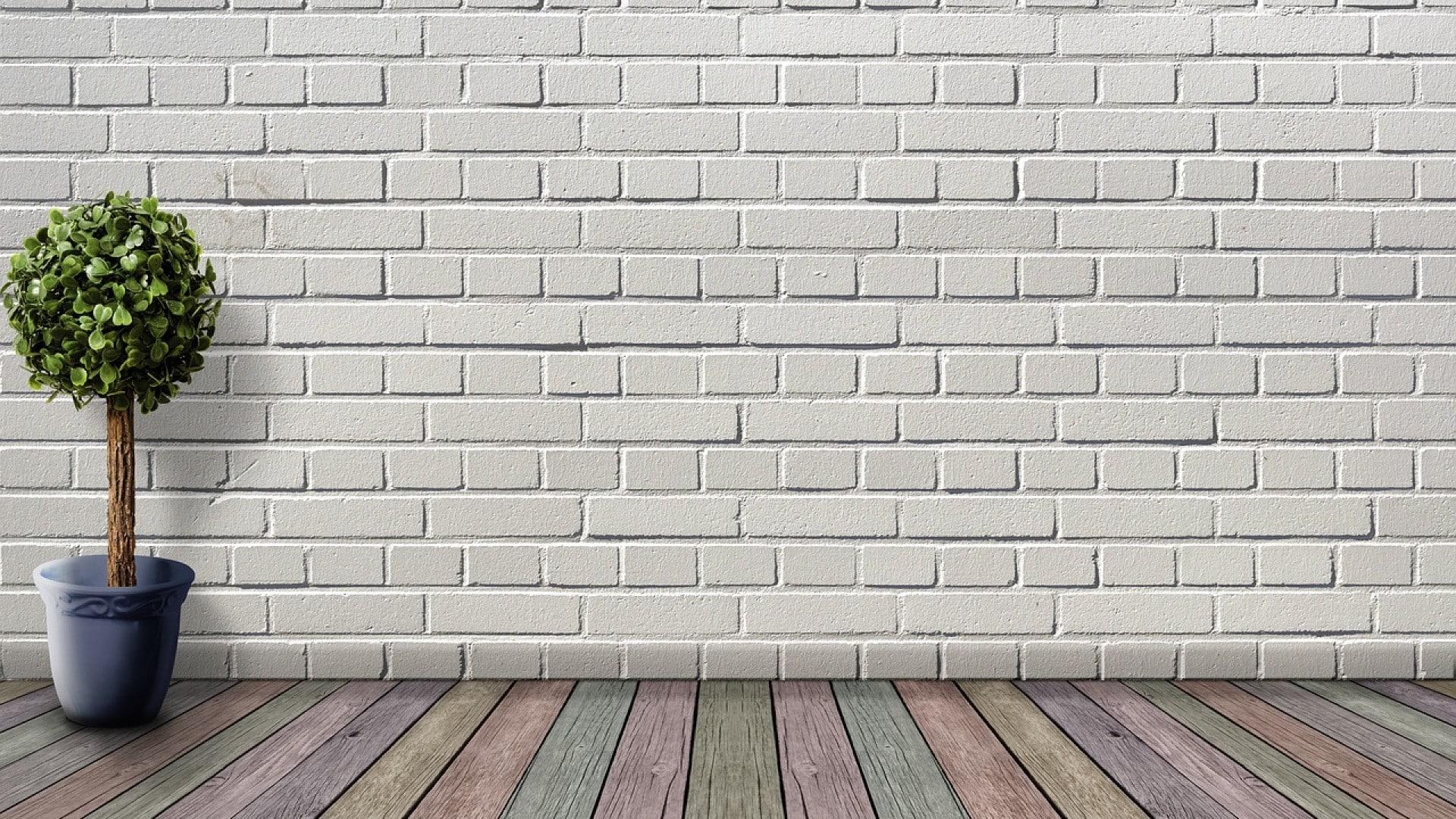 Pourquoi décorer votre pan de mur avec du bois ?